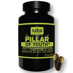 Saba pillar of youth 2