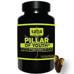 Saba pillar of youth